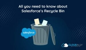 Salesforce Recycle Bin