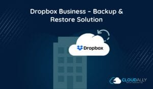 Dropbox Business Backup