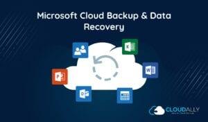 microsoft cloud backup
