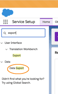 Salesforce Data Recovery: Data Export Wizard